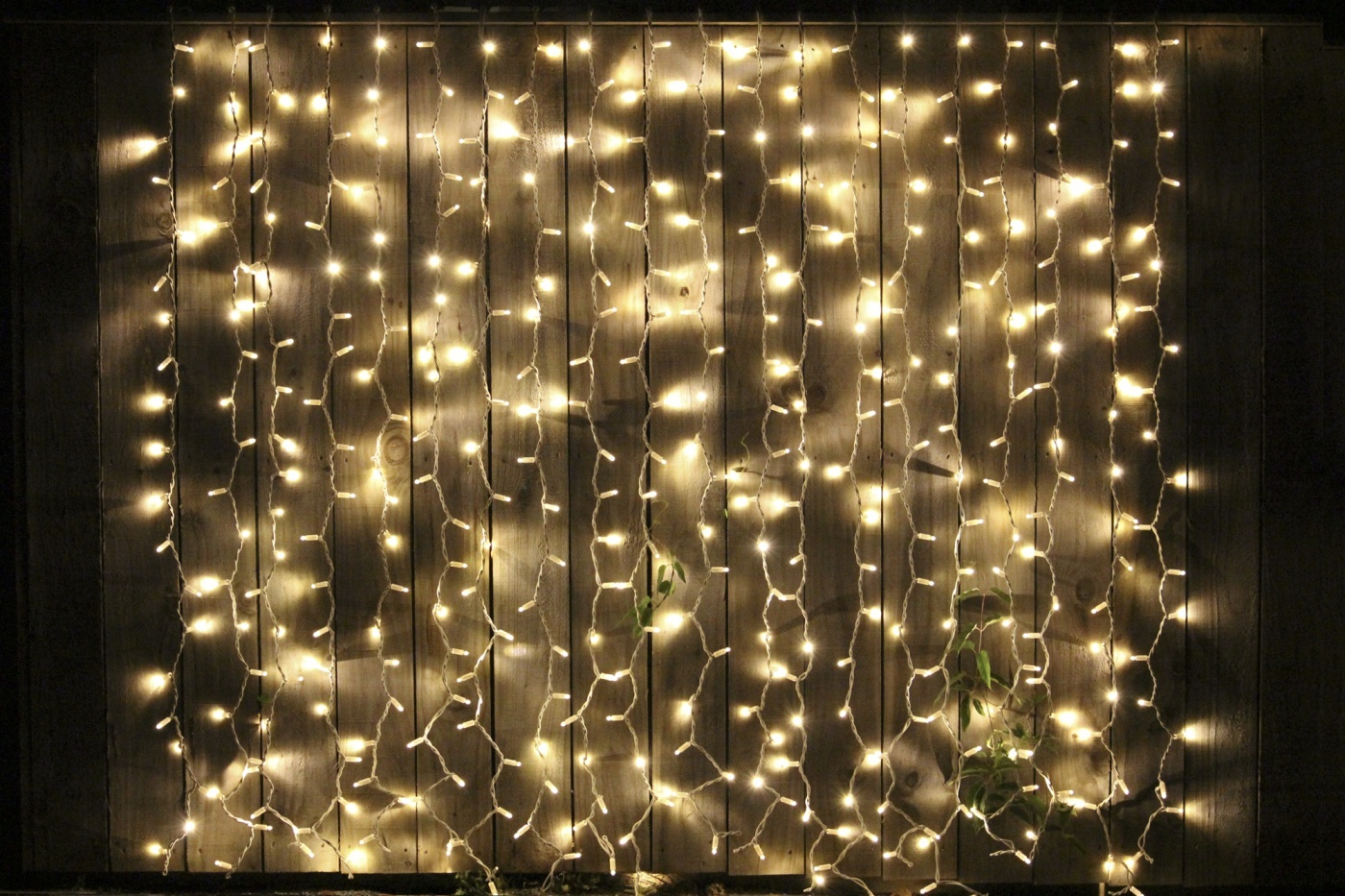 CURTAIN Fairy Lights 2m X Black Cable