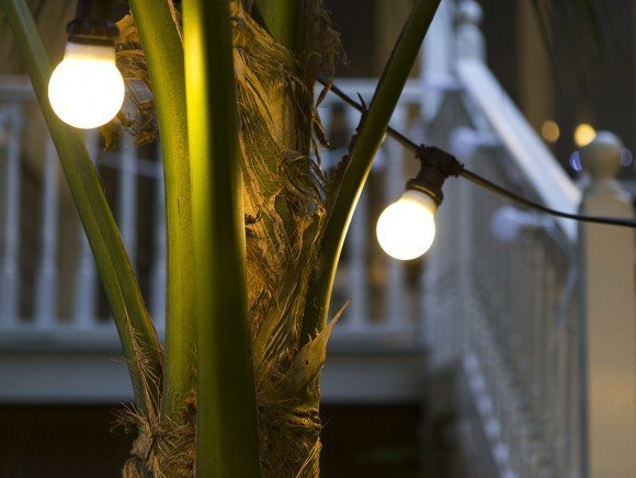 FESTOON Party Lights 10m - warm white on black cable