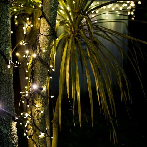 String Lights String Fairy Lights Fairy Lights Tree Lights